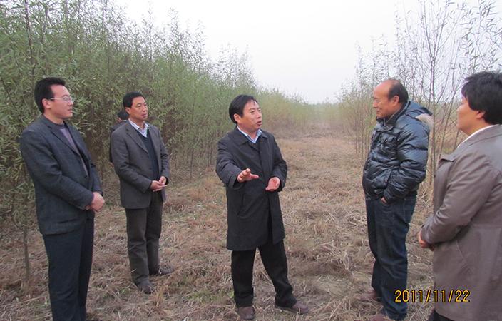 山東省種苗站站長徐金光研究員在濱州基地