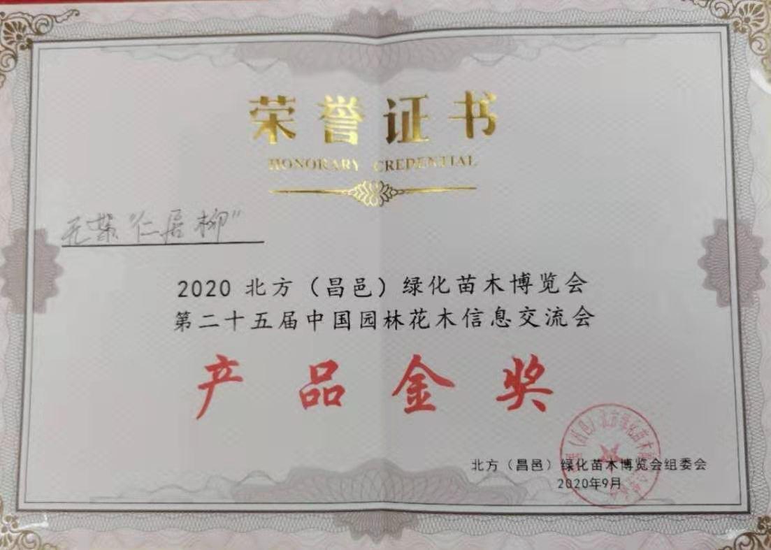 北方苗博會產品金獎